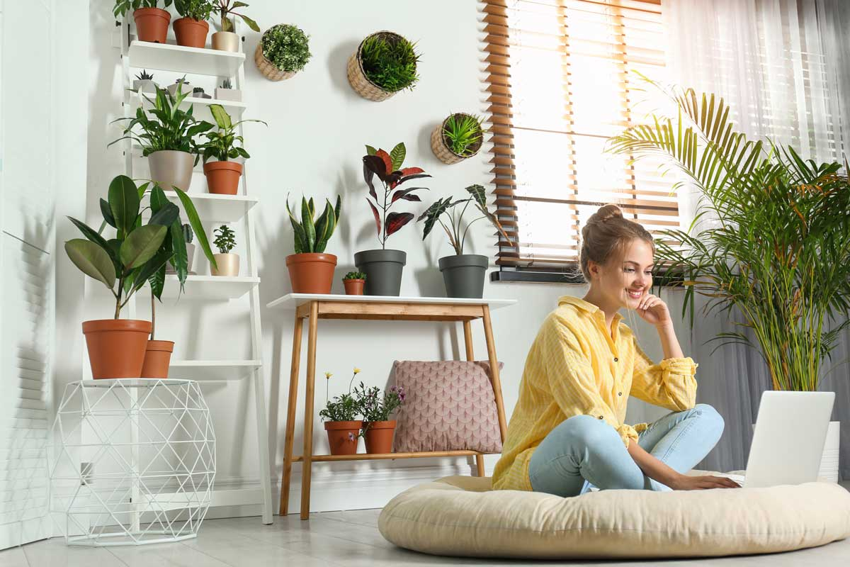 Woman working on laptop, surrounded by house plants